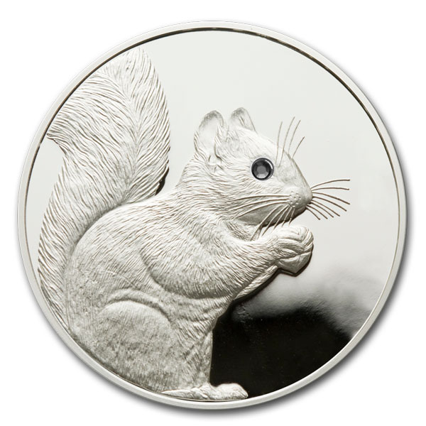 click to learn about Silver Squirrel Foundation